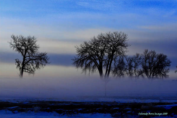 Colorado Born Images Art Print featuring the photograph Snow Fog by Rebecca Adams