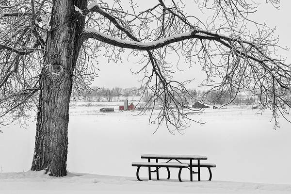 Snow Print featuring the photograph Snowy Winter Country Cottonwood Tree View Bwsc by James BO Insogna