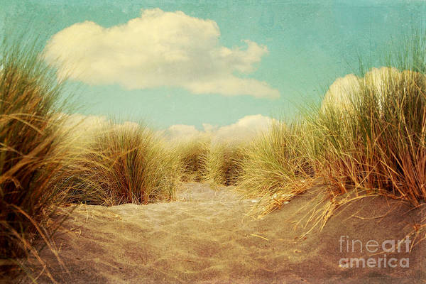 Landscape Art Print featuring the photograph Solitude by Sylvia Cook