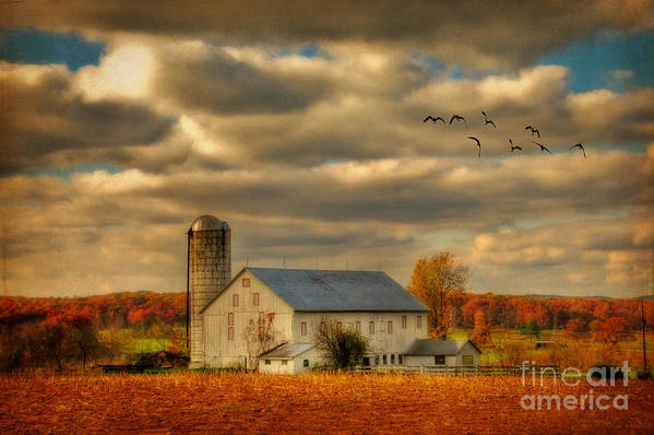 White Barn Art Print featuring the photograph South For The Winter by Lois Bryan