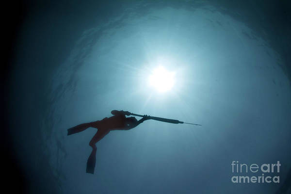 Australia Art Print featuring the photograph Spearfishing Silhouette by Cade Butler