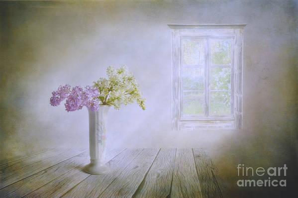 Art Art Print featuring the photograph Spring Dream by Veikko Suikkanen