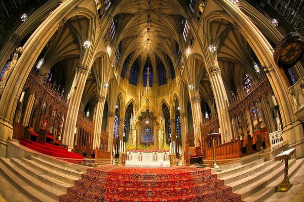 Cathedral Of St. Patrick Art Print featuring the photograph St. Patrick's Cathedral by Mitch Cat