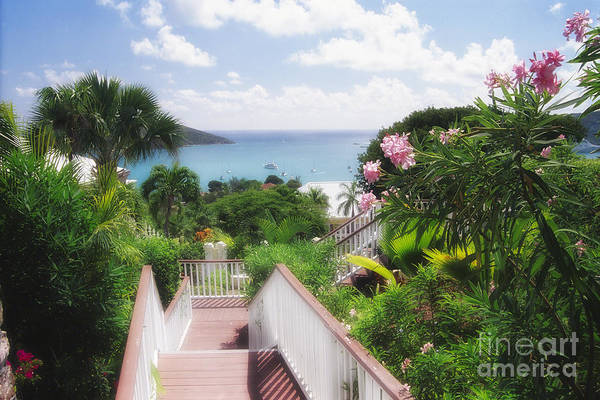 Vista Print featuring the photograph Stairs To Paradise by George Oze