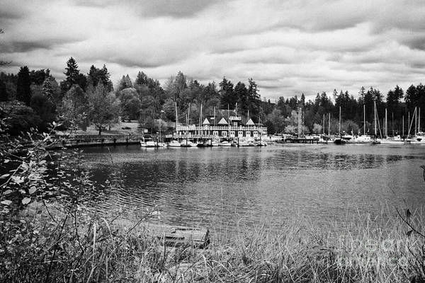 Stanley Art Print featuring the photograph stanley park coal harbour and Vancouver rowing club marina BC Canada by Joe Fox