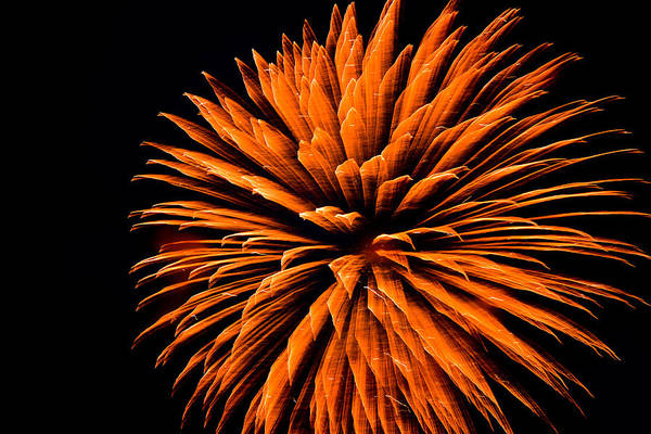 Fireworks Art Print featuring the photograph Starburst Iv by Ronda Broatch