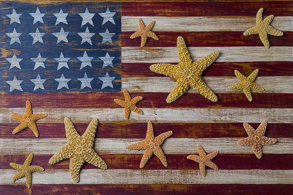 American Art Print featuring the photograph Starfish On American Flag by Garry Gay