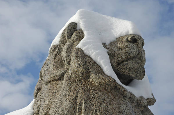 Lion Art Print featuring the photograph Stone Lion Covered With Snow by Matthias Hauser