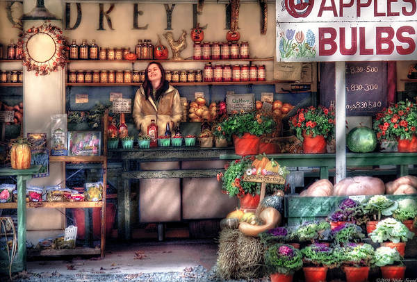 Savad Art Print featuring the photograph Store - Dreyer's Farm by Mike Savad