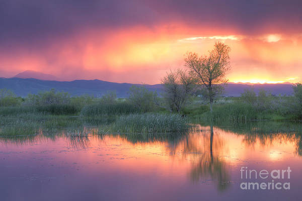 Camas County Art Print featuring the photograph Storm Color by Idaho Scenic Images Linda Lantzy