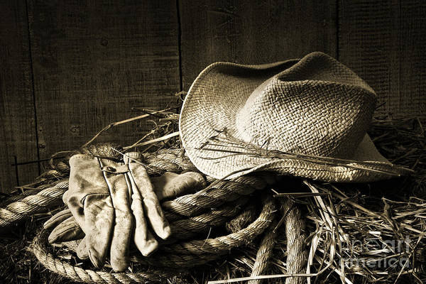Bale Art Print featuring the photograph Straw Hat With Gloves On A Bale Of Hay by Sandra Cunningham