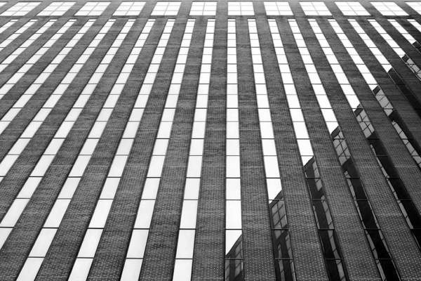 Stripes Art Print featuring the photograph Stripes by Nikolyn McDonald