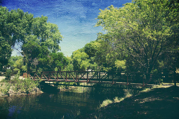 Contra Loma Regional Park Art Print featuring the photograph Summer Draws Near by Laurie Search