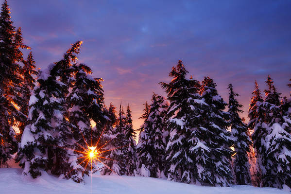 Winter Print featuring the photograph Sunrise Dreams by Darren White
