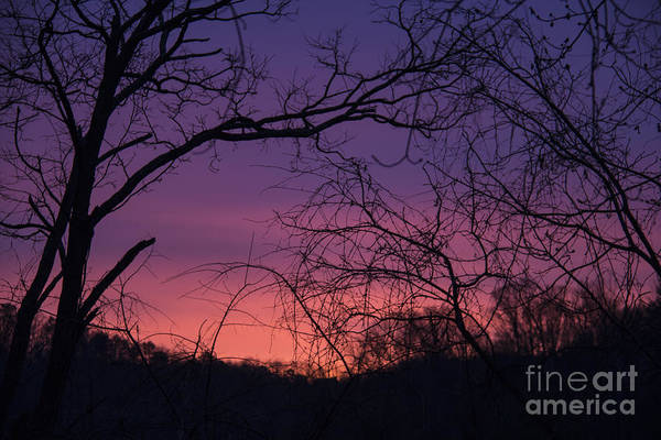 Sunrise Art Print featuring the photograph Sunrise January 21 2012 by Teresa Mucha