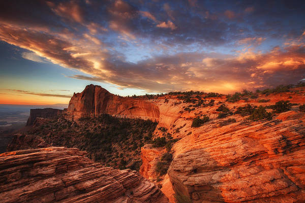 Sunrise Art Print featuring the photograph Sunrise Over Canyonlands by Darren White