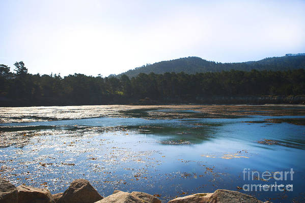 State Beach Near Big Sur Art Print featuring the photograph Sunrise Over Whaler's Cove At Point Lobos California by Artist and Photographer Laura Wrede