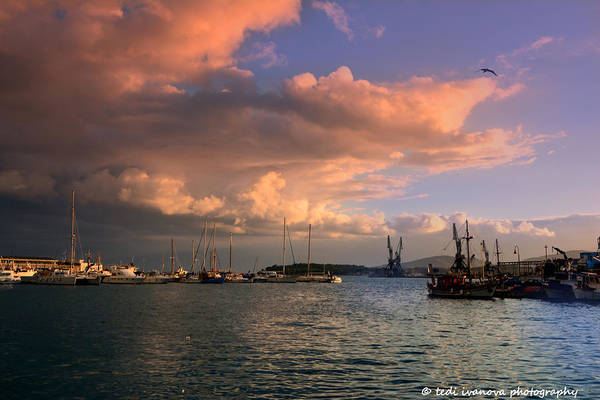 Sunset Art Print featuring the photograph Sunset In The Port by Tedi Ivanova