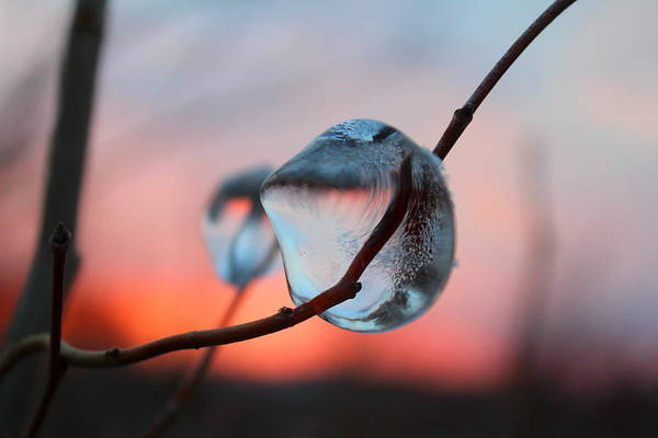 Ice Art Print featuring the photograph Sunset River Tears by David Jones