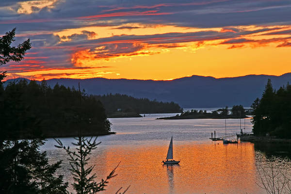 Sunset Art Print featuring the photograph Sunset Sail In The Bay by Peggy Collins