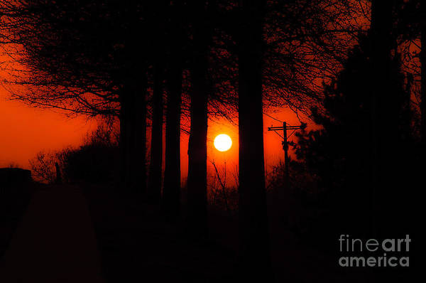 Sun Art Print featuring the photograph Sunset Silhouette Painterly by Andee Design