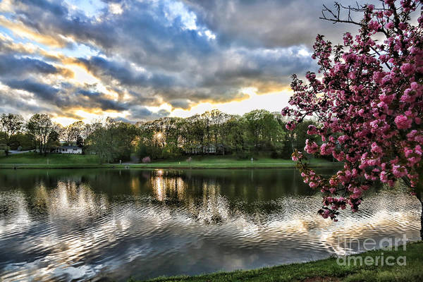 Tennessee Art Print featuring the photograph Sunset Southern by Chuck Kuhn