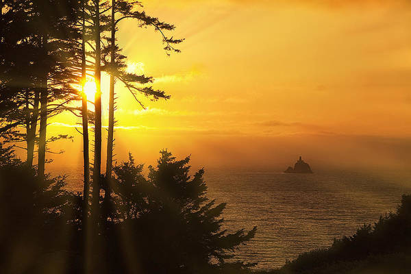 Lighthouse Art Print featuring the photograph Sunset Thru The Trees by Andrew Soundarajan