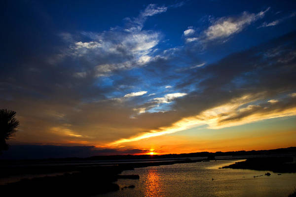 Photography Art Print featuring the photograph Sunset by Tim Buisman