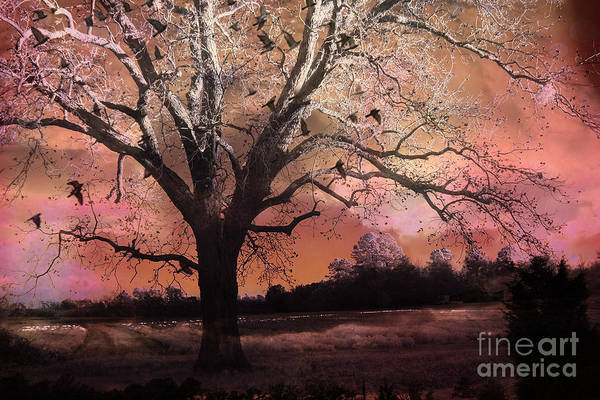 Surreal Pink Nature Photos Art Print featuring the photograph Surreal Gothic Fantasy Trees Pink Sky Ravens by Kathy Fornal