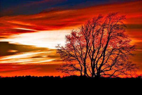Art Art Print featuring the pyrography Texas Sunset by Darryl Dalton