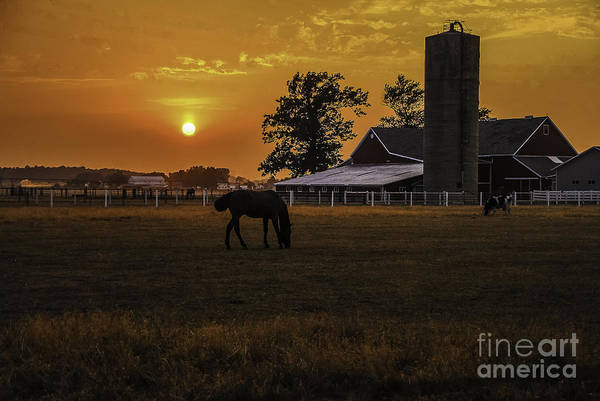 M.c. Story Art Print featuring the photograph The Beauty Of A Rural Sunset by Mary Carol Story