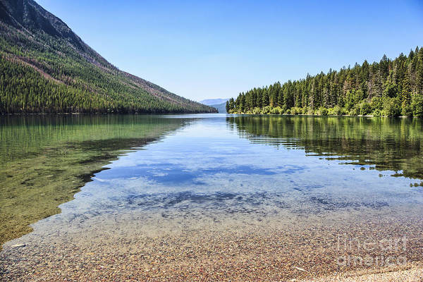 Kintla Lake Art Print featuring the photograph The Best Beach In Glacier National Park by Scotts Scapes