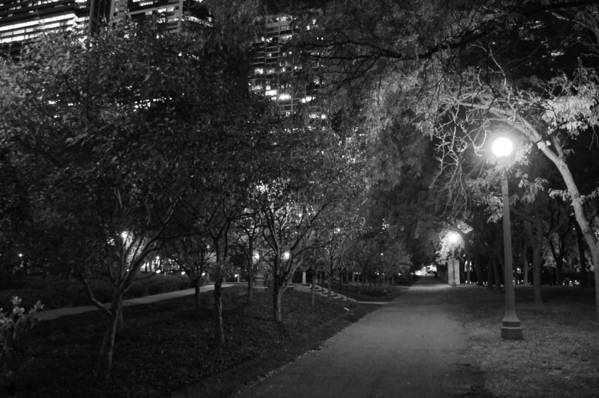 Park Art Print featuring the photograph The Evening Foliage Tunnel by Gregory Lafferty