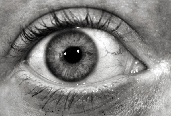 Eye Print featuring the photograph The Eye by Luke Moore