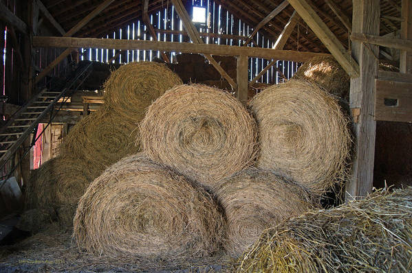 Hay Art Print featuring the photograph The Hay Barn by Steph Maxson