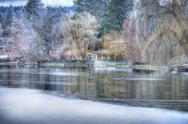 Trees Reflect In The Deschutes River Art Print featuring the photograph The Landing by Nichon Thorstrom