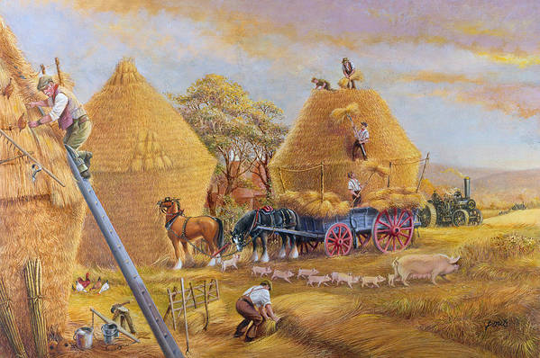 Haystacks; Stack; Hay; Stacking; Harvesting; Harvest; Farm; Field; Fields; Farmers; Laborers; Piglets; Pig; Sow; Steam; Engines; Ploughing; Engine; Shire Horse; Horses; Wagon; Cart; Rural; Livestock Art Print featuring the painting The Last Load by Dudley Pout
