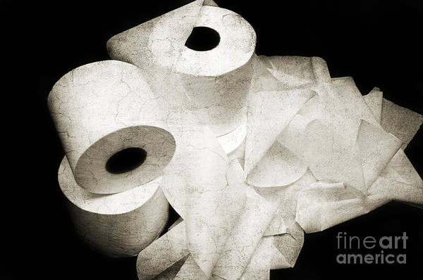 Toilet-paper Art Print featuring the photograph The Spare Rolls 2 - Toilet Paper - Bathroom Design - Restroom - Powder Room by Andee Design