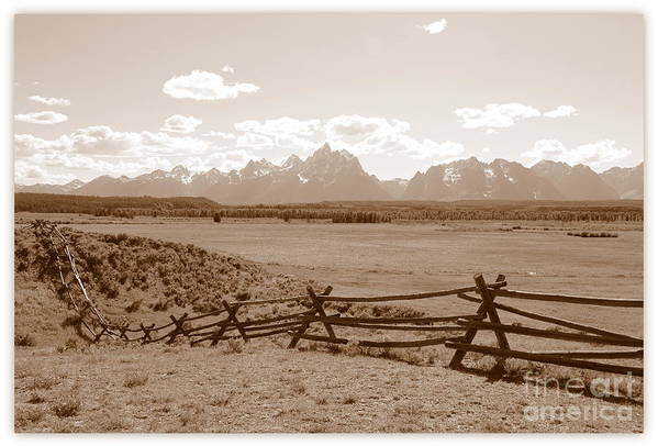 The Tetons Art Print featuring the photograph The Tetons In Sepia by Carol Groenen