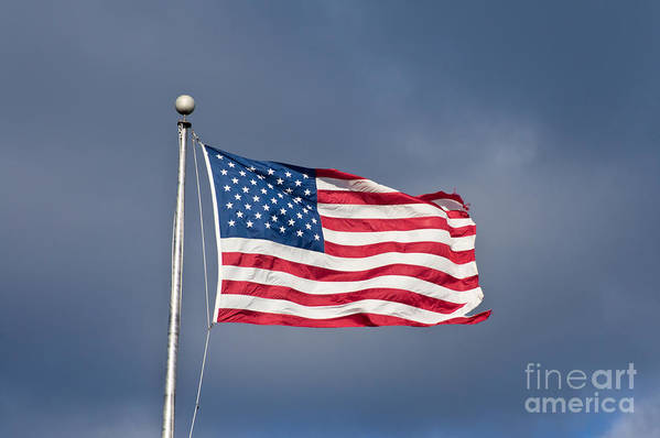 America Art Print featuring the photograph The United States Of America by Benjamin Reed