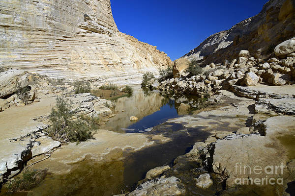 Water Art Print featuring the photograph There Is Water In The Desert 02 by Arik Baltinester