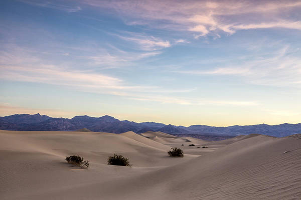 Blue Art Print featuring the photograph Three In The Sand by Jon Glaser