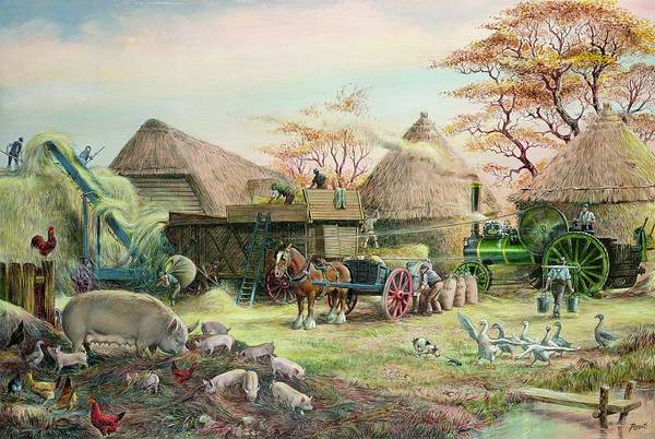 Steam; Thresher; Farmyard Scene; Farm; Yard; Haystack; Farmers; Labourers; Shire Horse; Thatched; Roof; Roofs; Harvest; Family Of Pigs; Pig; Piglets; Sow; Rural; Thatch; Farm Art Print featuring the painting Threshing In Kent by Dudley Pout