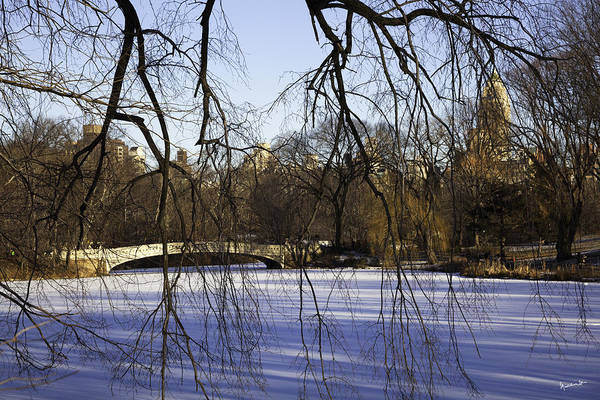 Bridge Art Print featuring the photograph Through The Branches 1 - Central Park - Nyc by Madeline Ellis