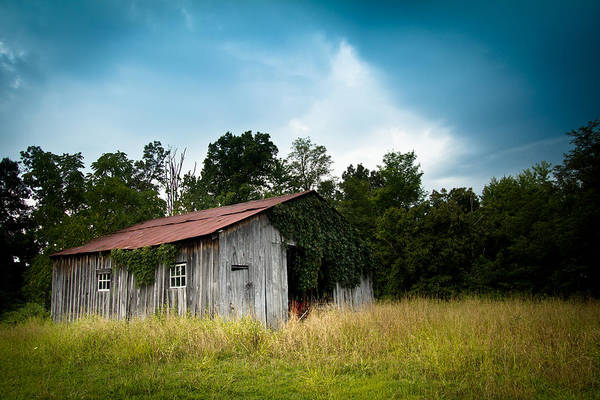 Barn Art Print featuring the photograph Tin Roof...ivy Covered Barn by Shane Holsclaw