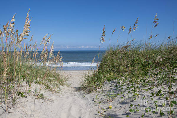 Obx Art Print featuring the photograph To The Beach by Kay Pickens