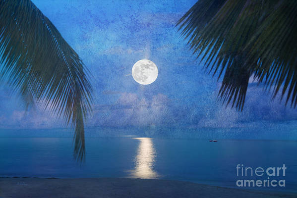 Seascape Art Print featuring the photograph Tropical Moonglow by Betty LaRue