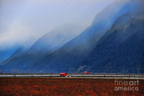 Farms Art Print featuring the photograph Two Red Farm Buildings by Randy Harris