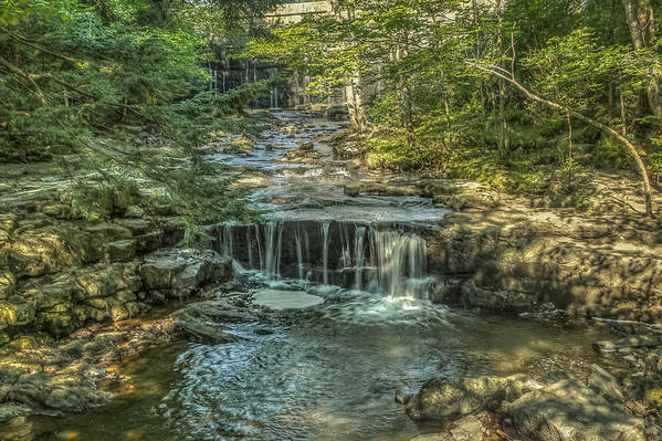 Maine Art Print featuring the photograph Vaughan Woods Stream by Jane Luxton