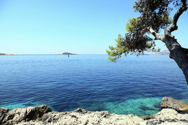 Water's Edge Art Print featuring the photograph View Of Dubrovnik From Cavtat Peninsula by Vuk8691